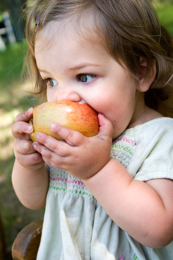 Organic Foods Great for Toddlers